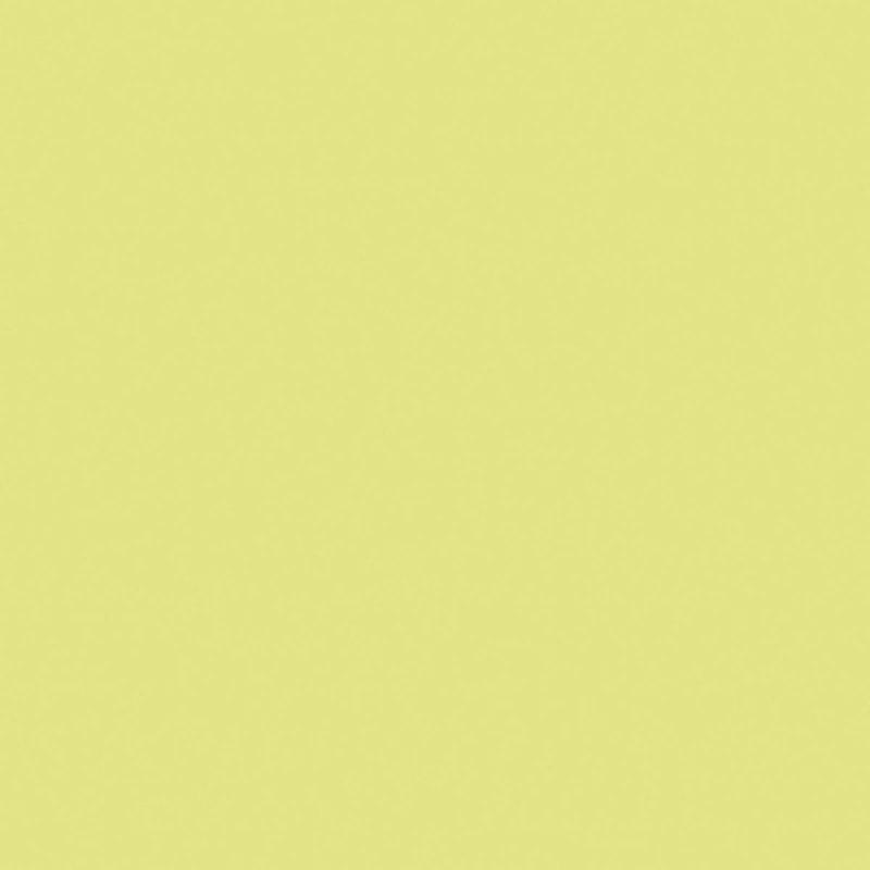 Meubelpaneel Citron